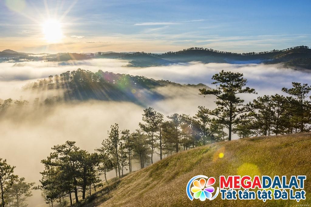 Săn mây Đà Lạt trên đồi Đa Phú - Không gian bất tận