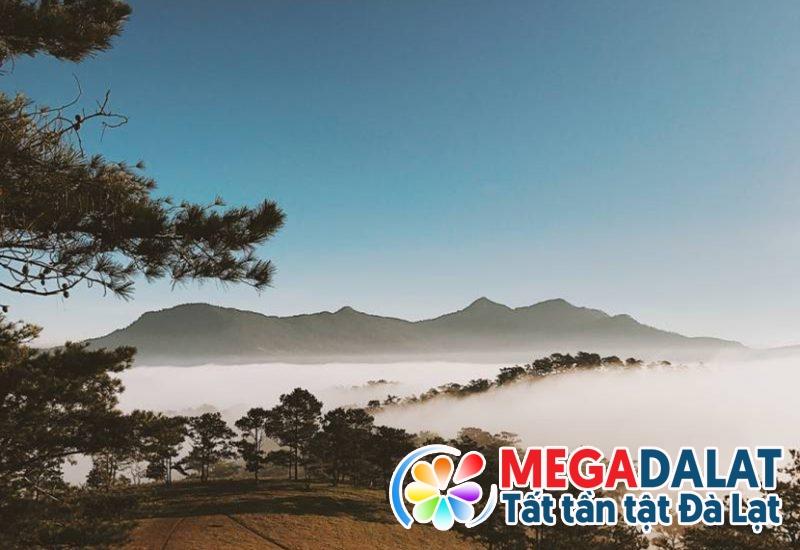 Săn mây Đà Lạt trên đồi Đa Phú